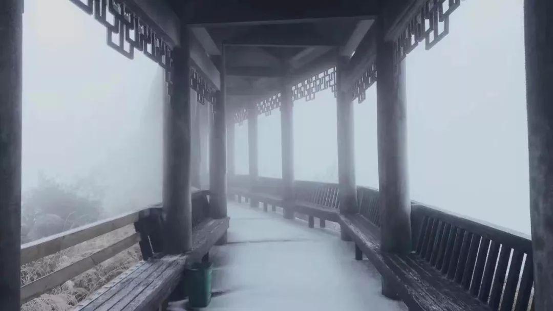下了一夜雪,九仙山迎来雾凇!银装素裹!超多美图!约吗?