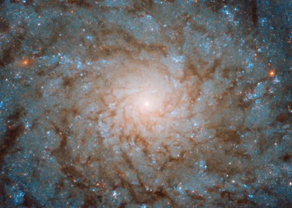 """太空深处的""""指纹""""?NASA公布旋涡星系美照(图)"""