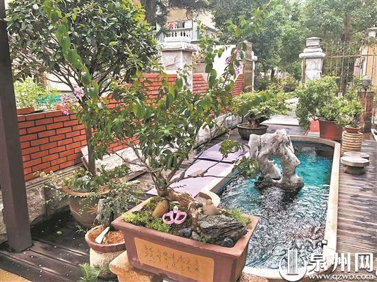泉州今年在145个省级试点村率先启动1730户美丽庭院创建工作