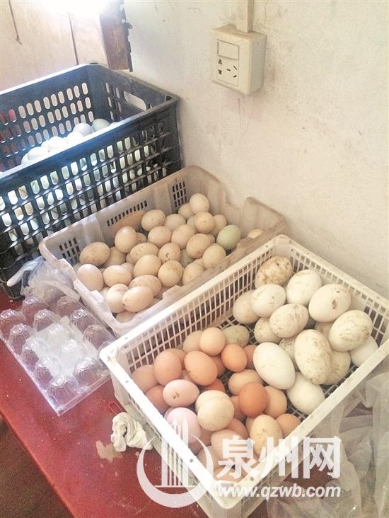 请您买个蛋 帮帮这家人!