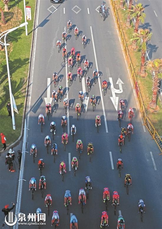 2017环泉州湾国际公路自行车赛掠影