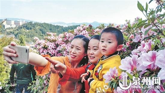 德化县唐寨山省级森林公园满山遍野的杜鹃花争奇斗艳