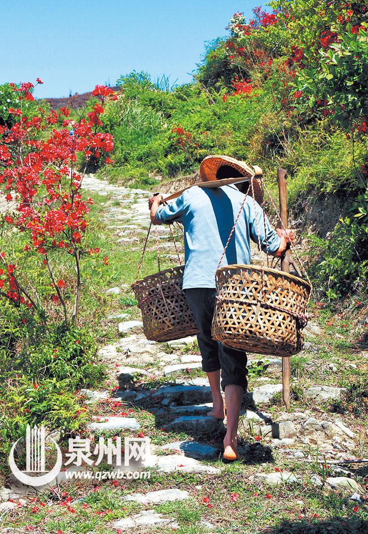 千百年前,德化陶瓷装在竹篾筐里,沿着锦山这条古道,走出山门,走向丝绸之路,走向世界。