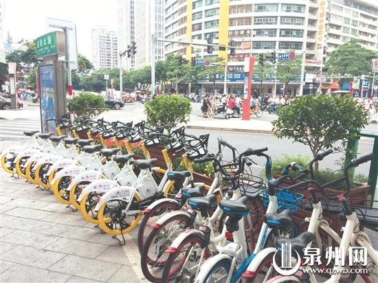 新电踏车投放后,我市街头共享车辆进一步增多。