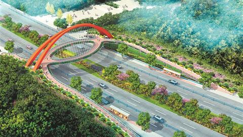 森林公园人行天桥预计年底开工