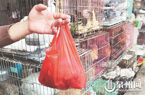 在市民的习惯里,塑料袋是装菜的好工具。