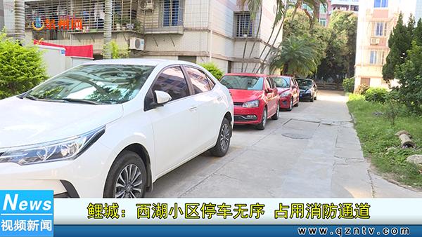 鲤城:西湖小区停车无序 占用消防通道